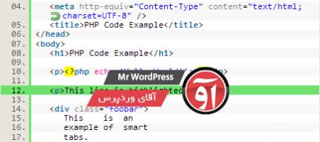 کد ها در وردپرس