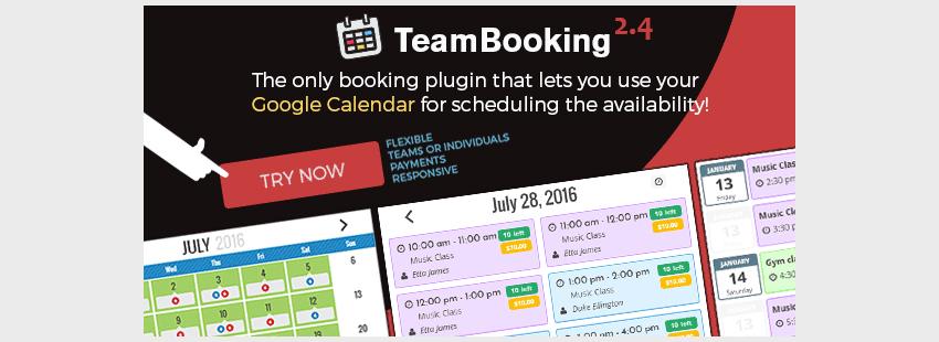 افزونه نوبت دهی وردپرس Team Booking