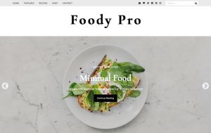 قالب فارسی وردپرس FoodyPro