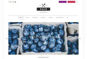 قالب چندمنظوره وردپرس Kale
